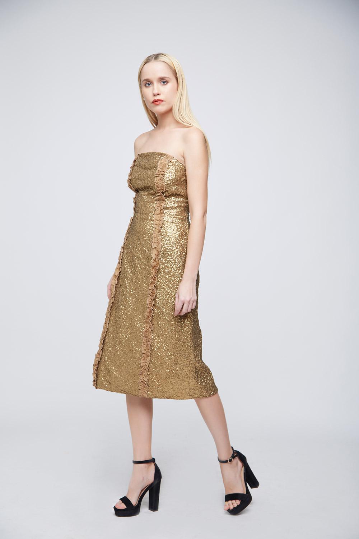 Golden Sequin Dress -0