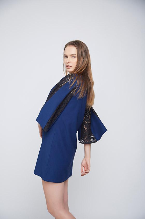 Blue Dress Black Net Pannel Sleeves - Back